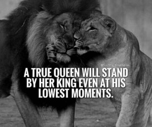true love and loyalty image