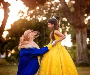 dog, beauty and the beast, and animals image