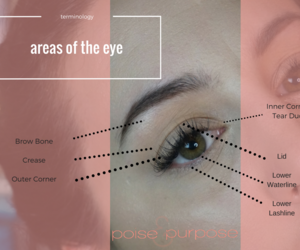 makeup, tutorial, and cheat sheets image