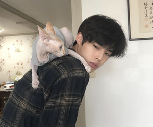 boy, cat, and ulzzang image
