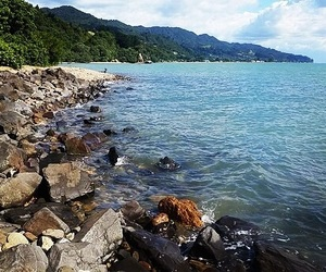 beach, thames, and new zealand image
