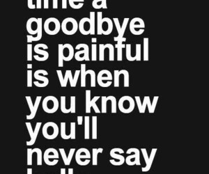 goodbyes, heartbreak, and pain image