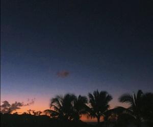 beach, palm trees, and rainbow image
