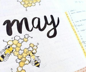 may, bee, and yellow image