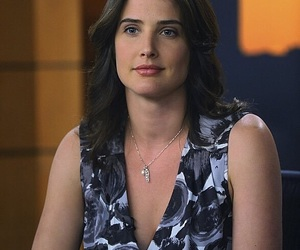 Avengers, how i met your mother, and cobie smulders image