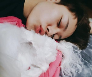 kpop, puppy, and cubefamily image