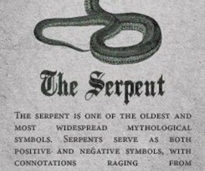 slytherin, serpent, and harry potter image