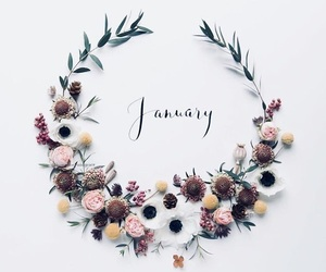 january, new year, and flowers image