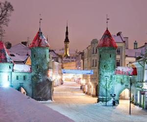 castle, estonia, and landscape image