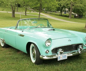 blue, ford, and thunderbird image