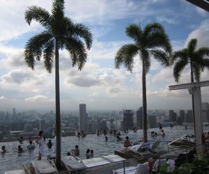pool, palm trees, and sky image