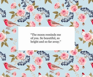 beautiful, bright, and quotes image