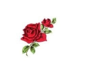 header, rose, and flowers image