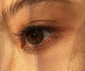eye, gold, and golden hour image