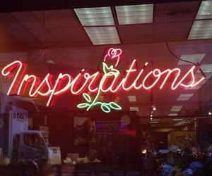 inspiration, neon, and rose image