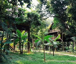 holiday, house, and jungle image
