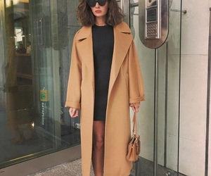 beauty, hair, and coat image