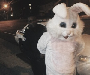 police, rabbit, and grunge image