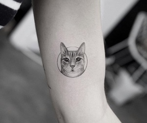 art, tattoo, and cats image