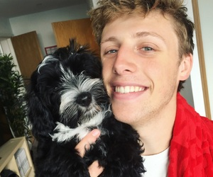 dog, wroetoshaw, and puppy image
