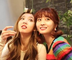 girl group, momo, and nayeon image