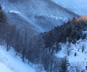 amazing, beauty, and blizzard image