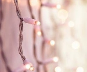 fairy lights, gold, and pink image