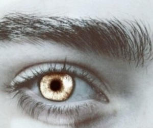 eye, gold, and pale image