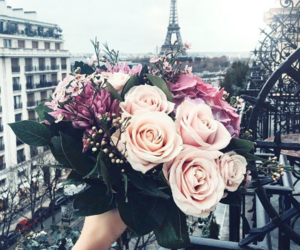city, flowers, and france image