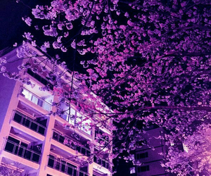 purple, aesthetic, and tree image