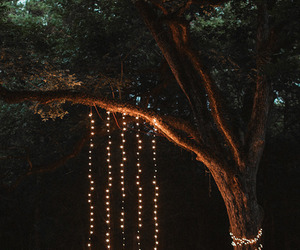 light, friends, and tree image