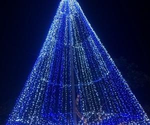 cristmas and luz image