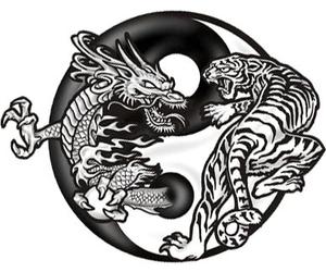 dragon, duality, and tattoo image