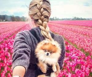 fashion, dog, and flowers image