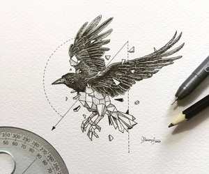 art, drawing, and bird image