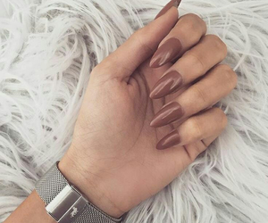 nails, brown, and beauty image