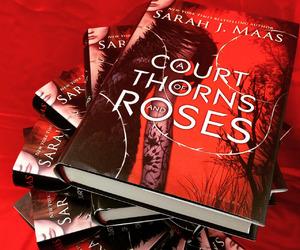 books, reading, and sarah j maas image