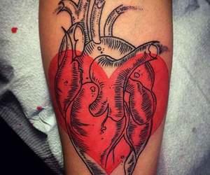 anatomy, arm, and heart image