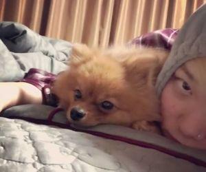 dog, selca, and bap image