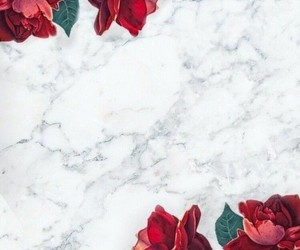 background, granite, and roses image