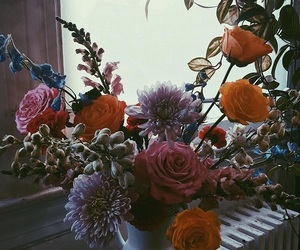 aesthetic, botanical, and flowers image
