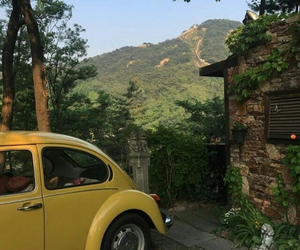 car, nature, and yellow image