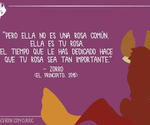 frases, libros, and rosa image