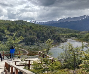 argentina, paisaje, and parque nacional image