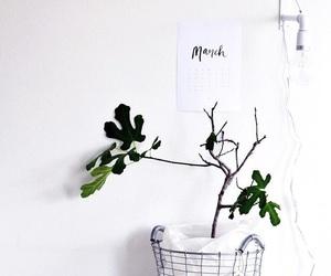 bloom, design, and floral image