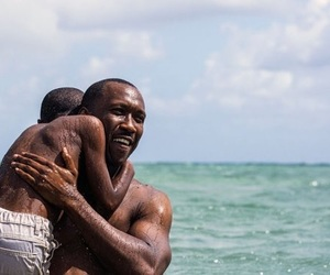 moonlight, movie, and oscar image