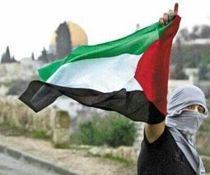 free, Gaza, and israel image