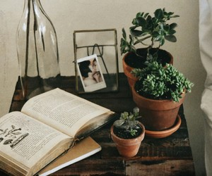 book, plants, and vintage image