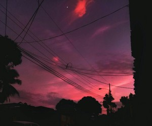 aesthetic, beauty, and pink image