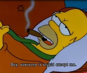 homer, the simpsons, and stupid image